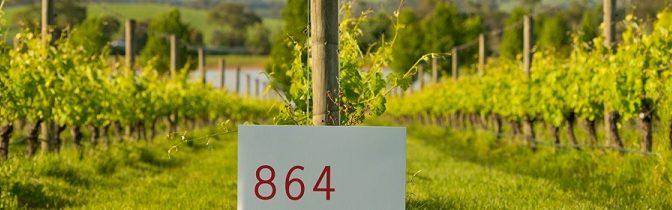Topwijnen uit Yarra Valley : Oakridge Winery  – 9 oktober 2017