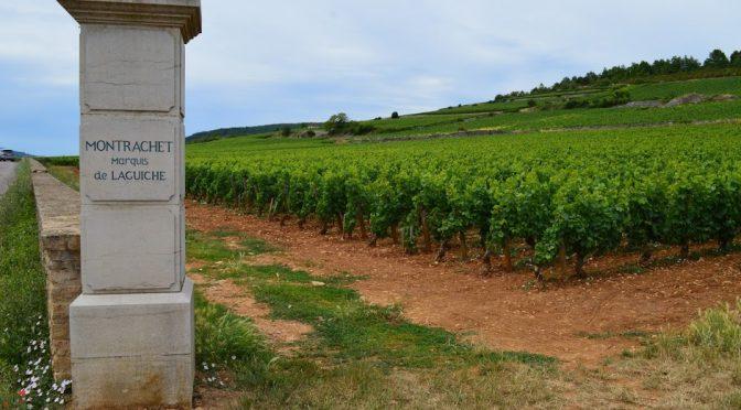 Meursault en vergelijkbare witte wijnen – Bourgogne, 8 april 2019